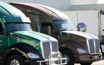 Two Areas that Simplify Fresh Food Businesses through Transportation
