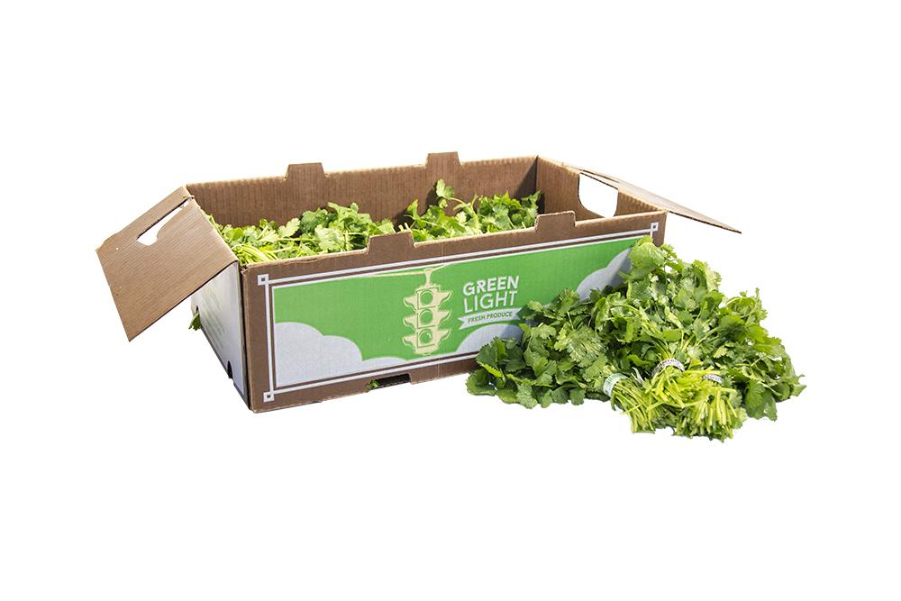 cilantro-box1-1000